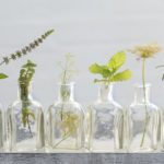 Breathe: The Benefits of Aromatherapy